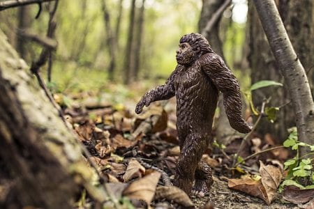 "On the swamps of Manchac lives ""bigfoot"""