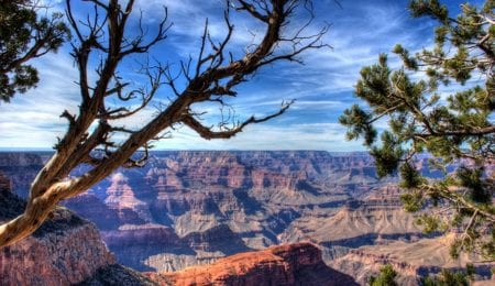 For One Day, All U.S. National Parks Are Free to Enter