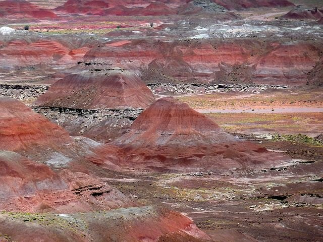 Petrified Forest, Arizona