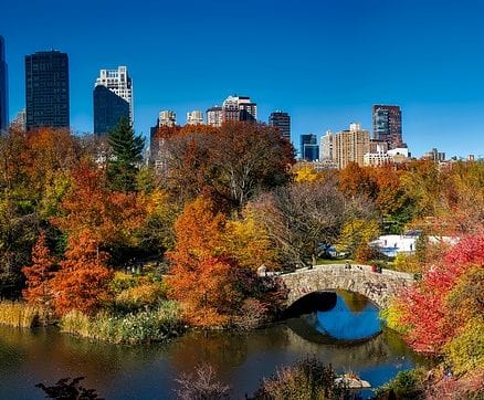 Budget New York | Attractions Cheaper $ 25