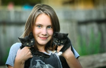 Felinotherapy: how can cats cure people?