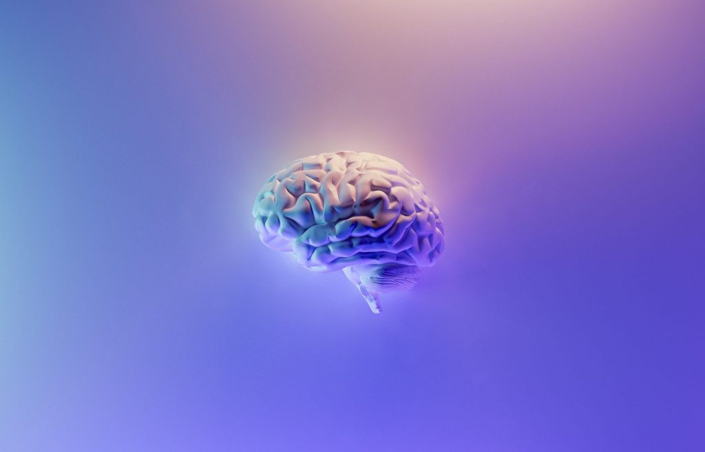 The Best Tips for Brain Health